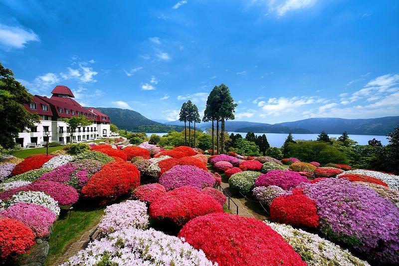 20200213つつじ庭園山のホテル